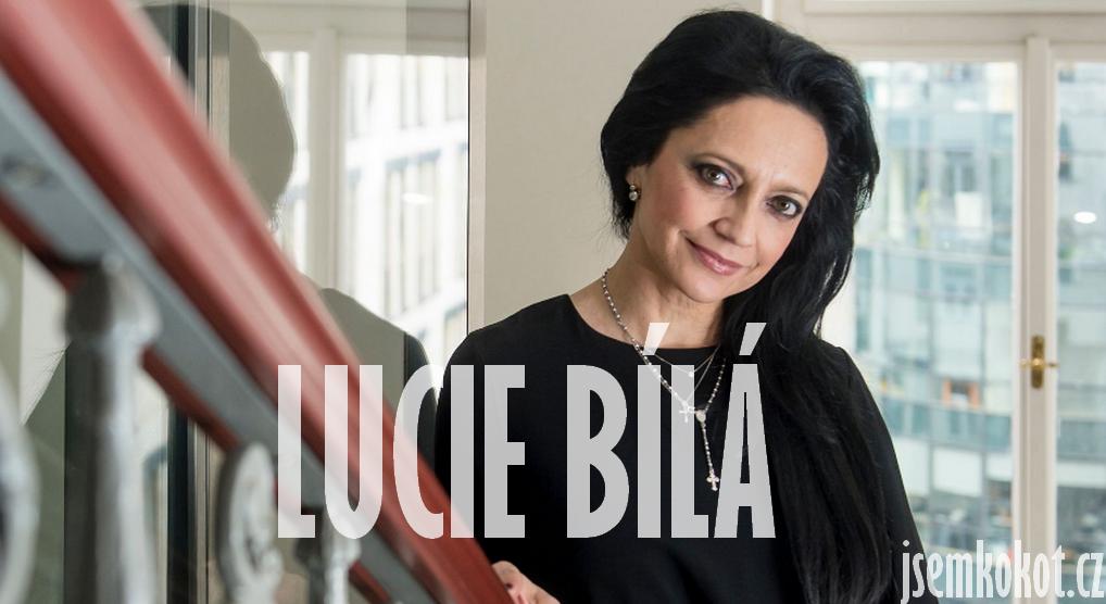 Lucie Bílá krádež, cover, autorské práva