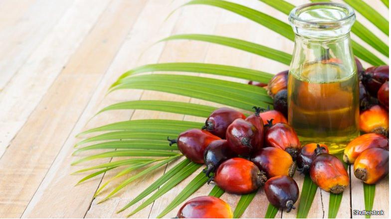 #11 Palmový olej
